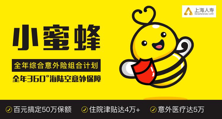 小蜜蜂全年综合意外保险
